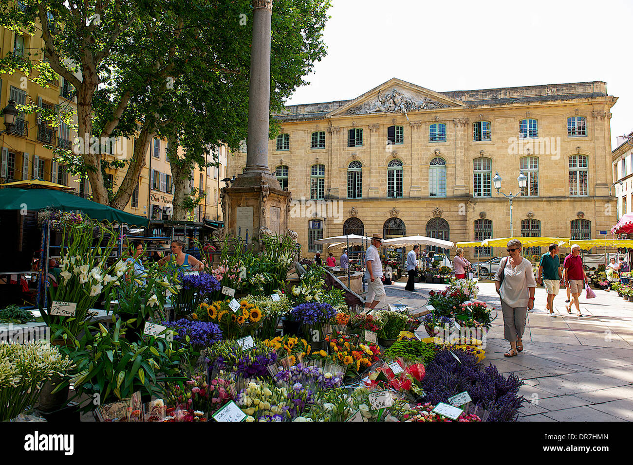 flower market aix en provence france stock photo royalty free image 65935765 alamy. Black Bedroom Furniture Sets. Home Design Ideas