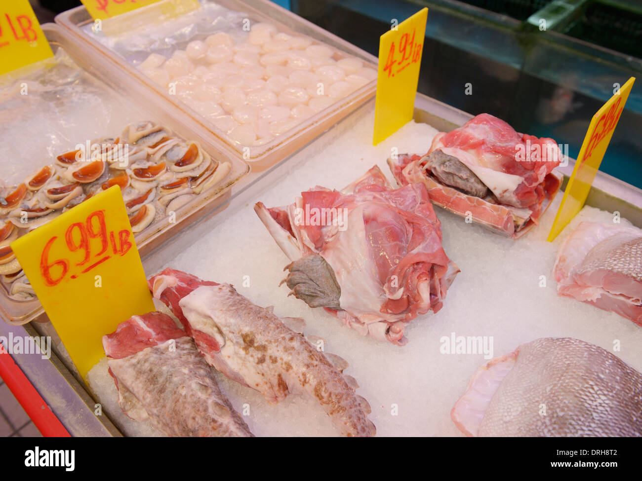 Chinatown fish market nyc with turtle meat for sale stock for Chinatown fish market
