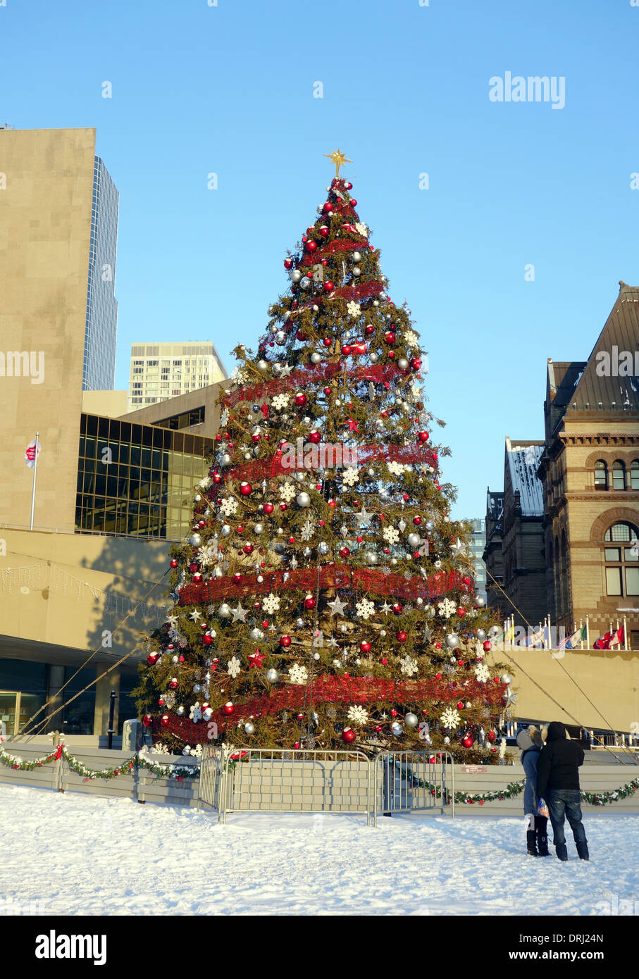 Christmas tree in Nathan Phillips Square in Toronto, Canada Stock ...