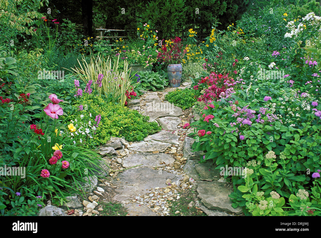 Flower Garden Path path in garden with painted mexican ceramic vase and blooming