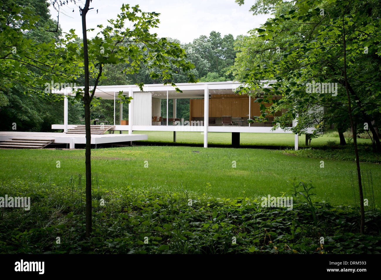 farnsworth house plano united states architect ludwig mies van stock photo royalty free. Black Bedroom Furniture Sets. Home Design Ideas