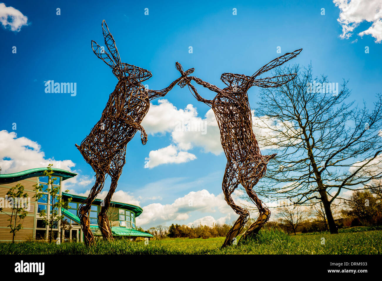 Fascinating Harrogate Rhs Stock Photos  Harrogate Rhs Stock Images  Alamy With Inspiring Willow Hares Sculpture By Phil Bradley At Harlow Carr Rhs Garden Harrogate  North Yorkshire With Beauteous China Garden Eastbourne Also Unusual Solar Garden Lights In Addition Vertical Garden Kit And Garden City Church As Well As Seaforde Gardens Additionally Garden Offices Studios From Alamycom With   Inspiring Harrogate Rhs Stock Photos  Harrogate Rhs Stock Images  Alamy With Beauteous Willow Hares Sculpture By Phil Bradley At Harlow Carr Rhs Garden Harrogate  North Yorkshire And Fascinating China Garden Eastbourne Also Unusual Solar Garden Lights In Addition Vertical Garden Kit From Alamycom