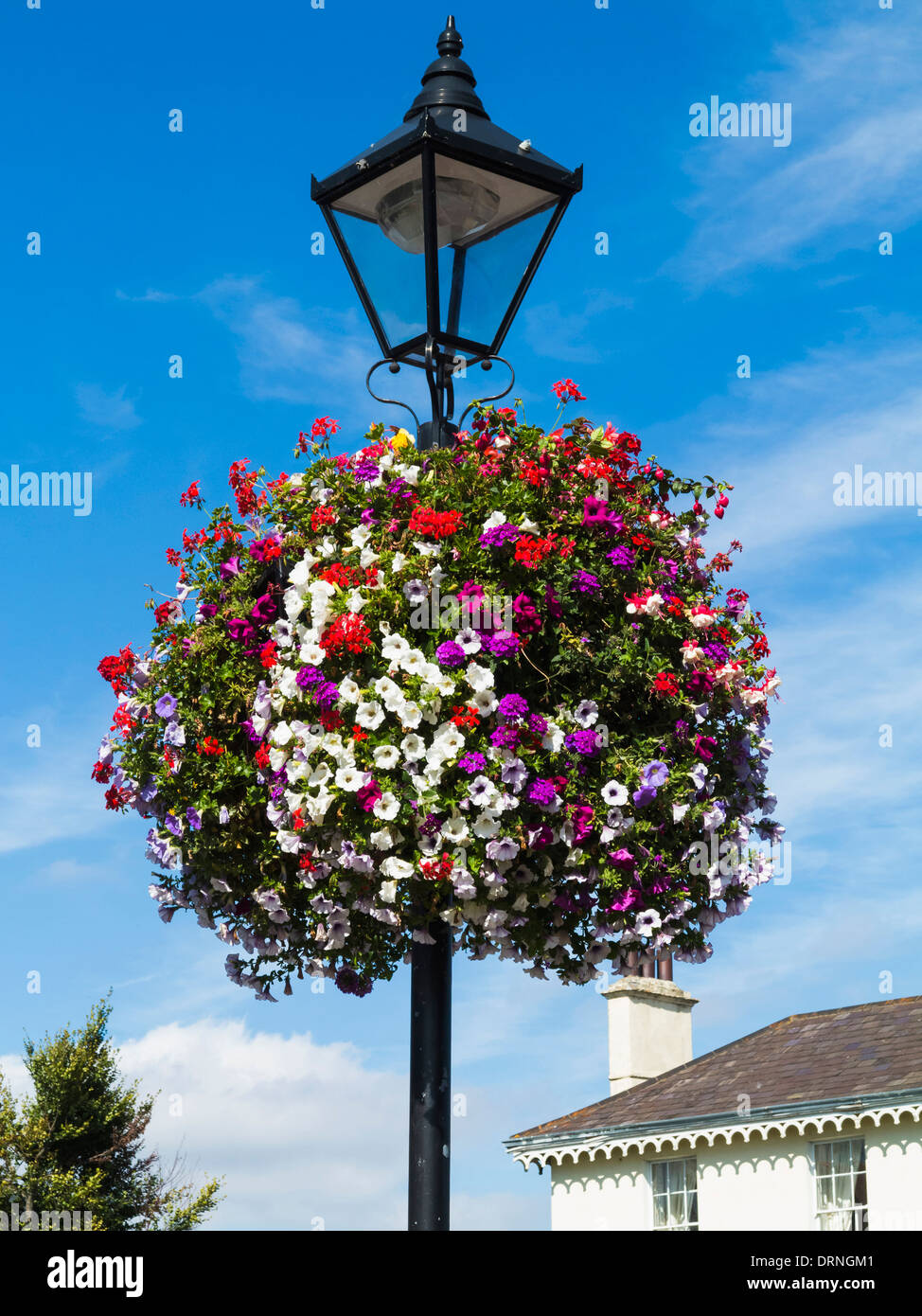 Flowers for hanging baskets ireland : Flower basket on an old lamp post dublin republic of