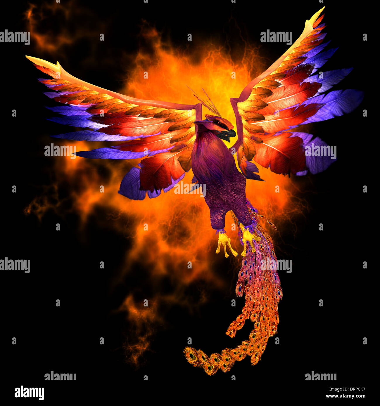 The phoenix bird is a legend and symbol of renewal and new stock the phoenix bird is a legend and symbol of renewal and new beginnings buycottarizona Choice Image
