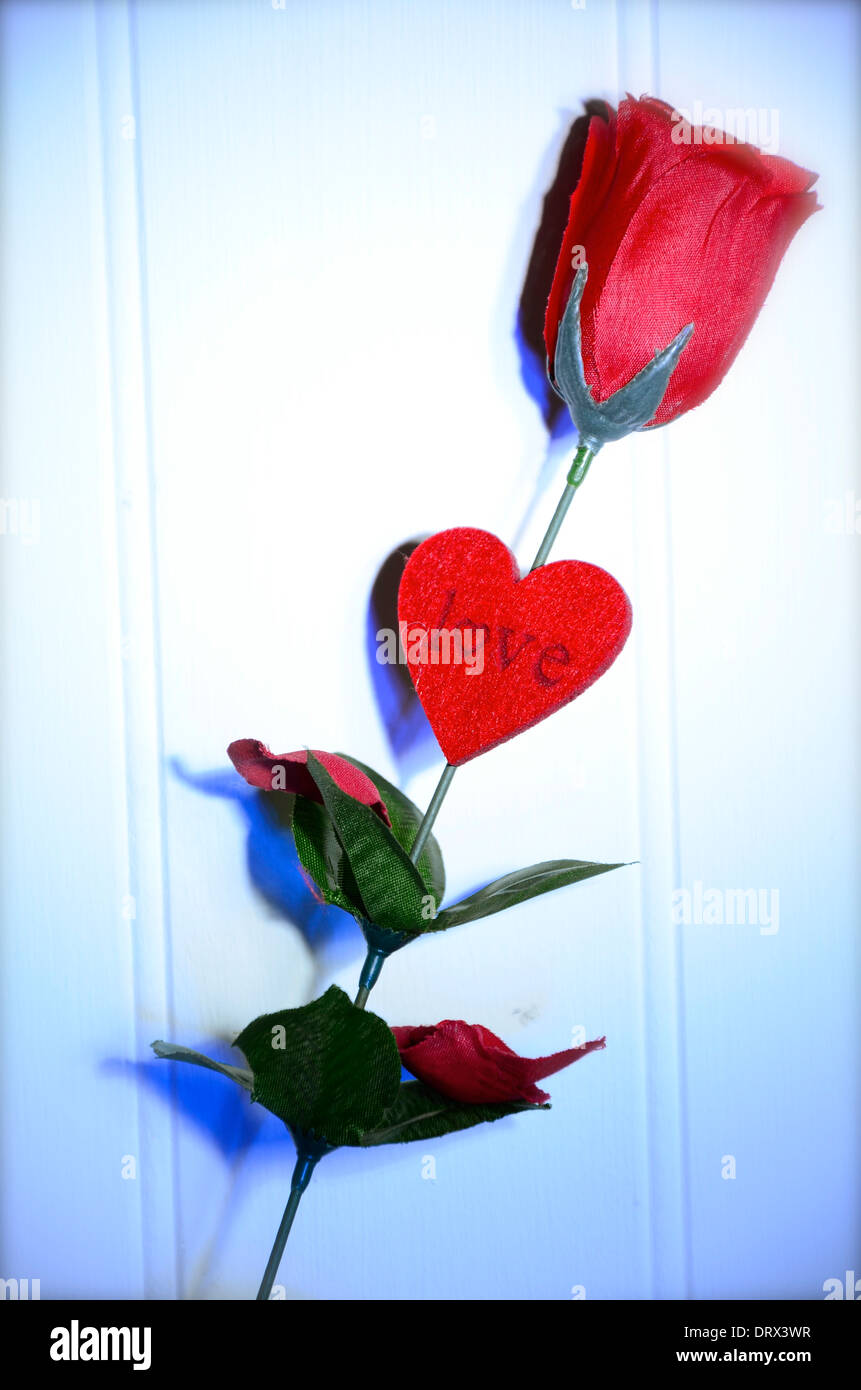 A Red Rose of Love for Valentines Day make a good card – How to Make a Good Valentines Day Card