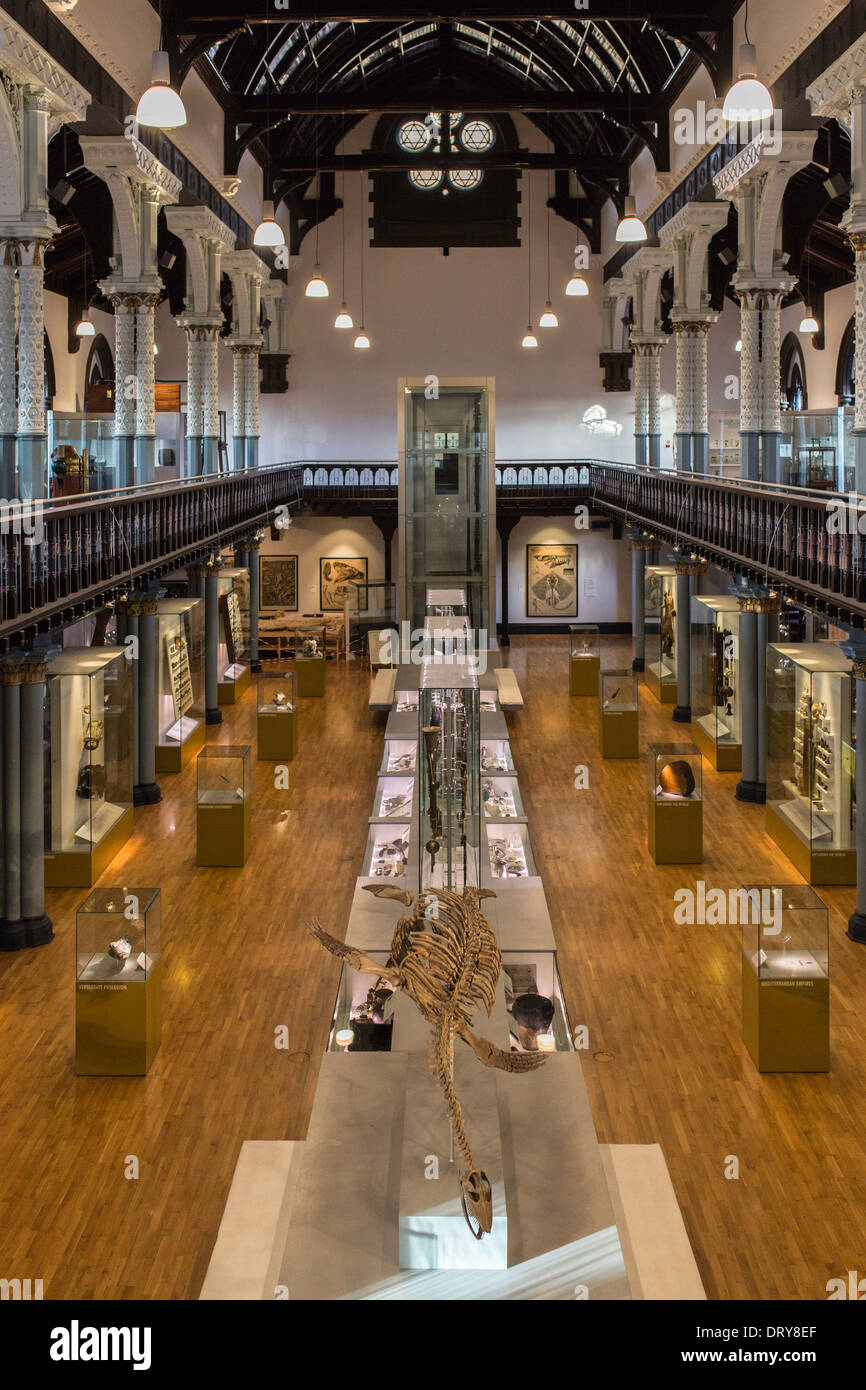 The Interior Of Hunterian Museum At University Glasgow Scotland