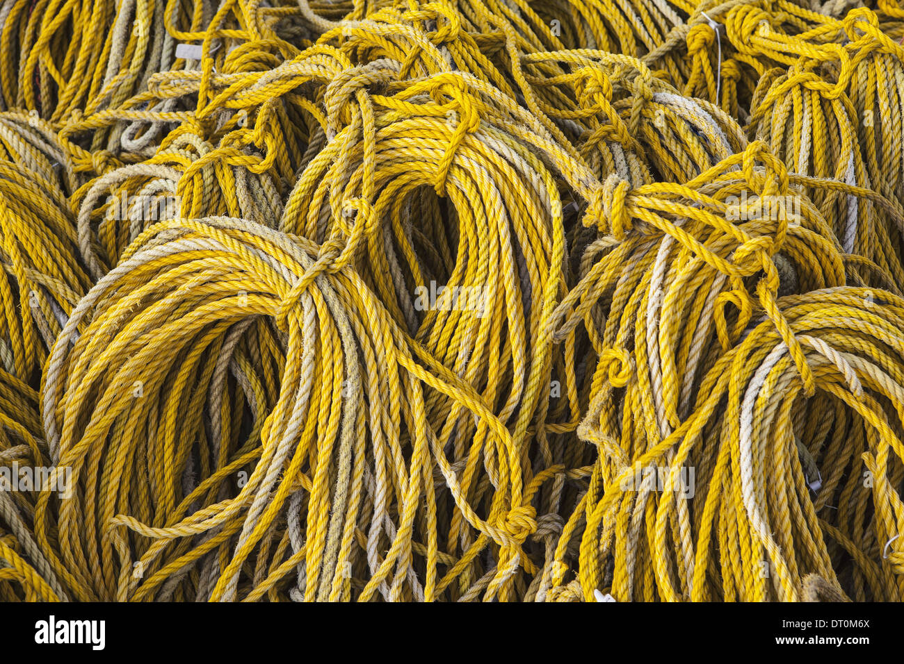 oysterville washington usa rows of coiled yellow rope commercial, Reel Combo