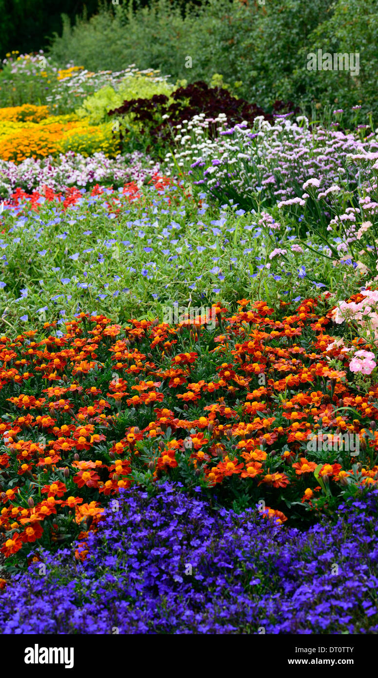 Colorful flower bedding - Stock Photo Mix Mixed Flower Bed Border Borders Bedding Display Annuals Annual Flower Flowers Planting Scheme Color Colorful