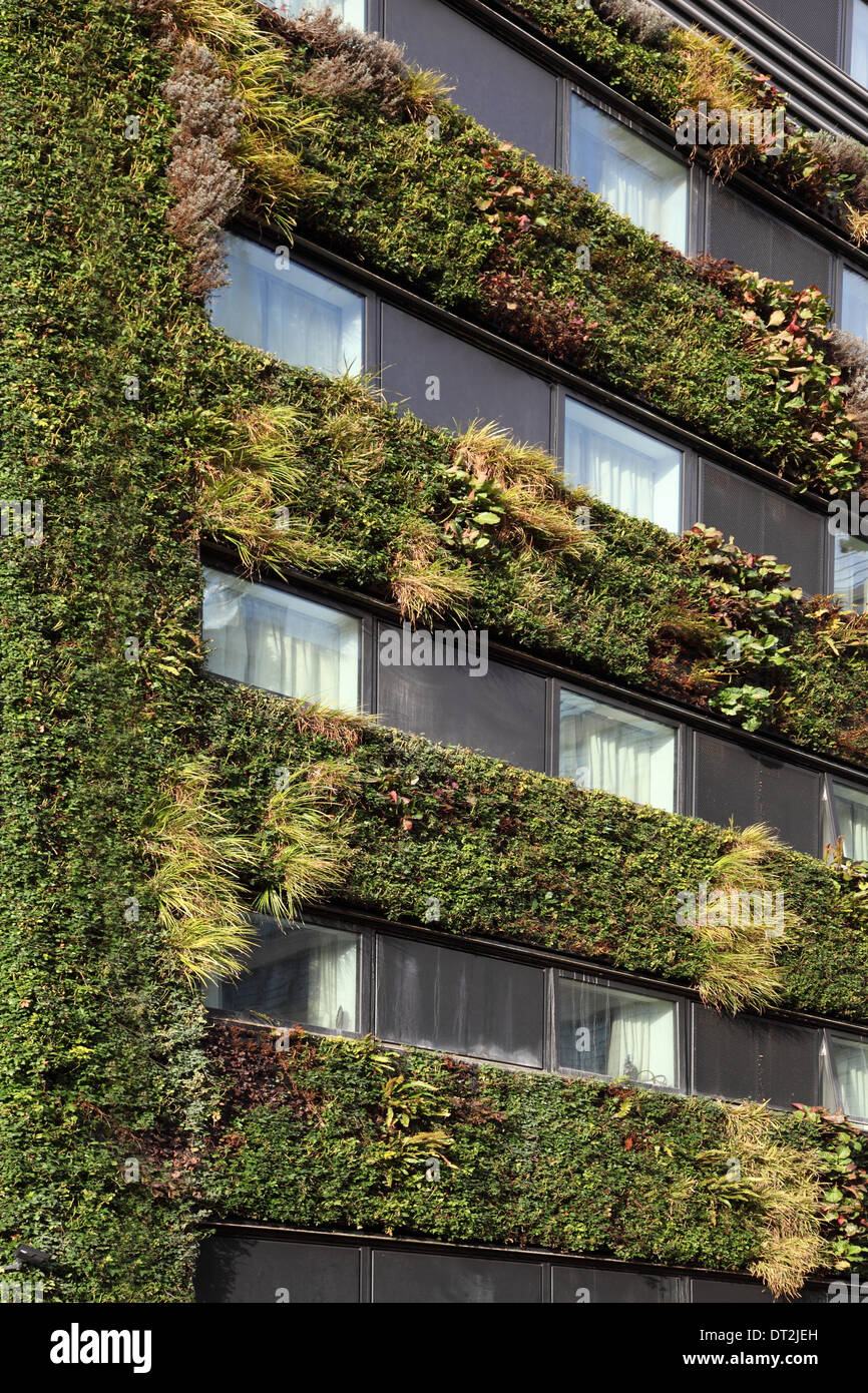 A plant covered living green wall on a new office building in the ...