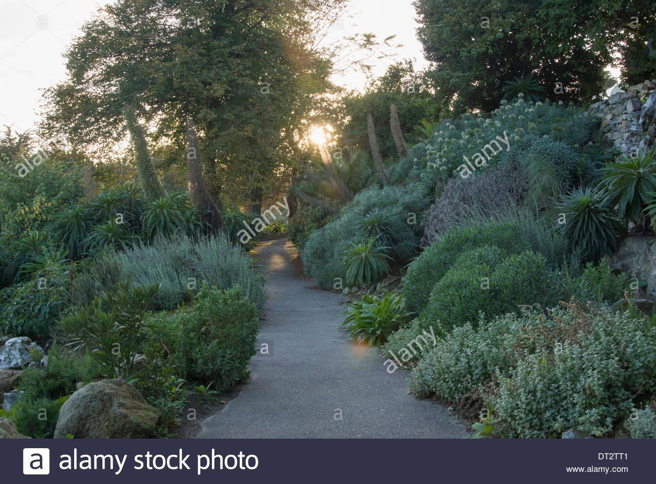 ventnor botanic garden stock photos & ventnor botanic garden stock, Garten und erstellen