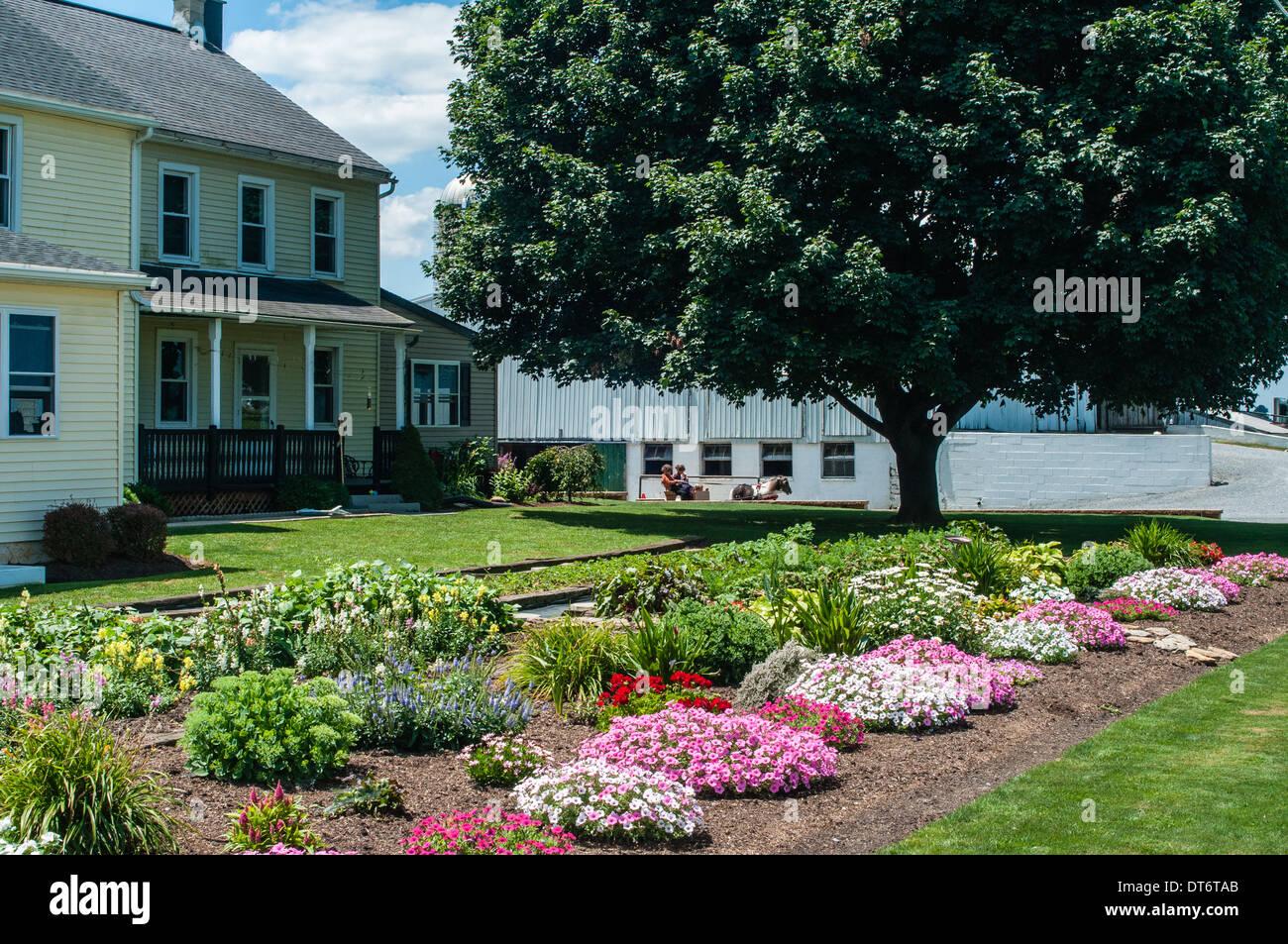 Amish Farm Flower Garden