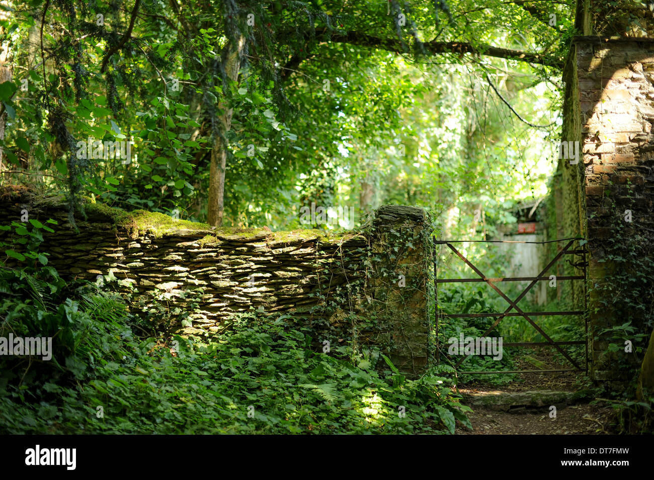 Old Stone Wall In Dappled Wood By An Iron Garden Gate