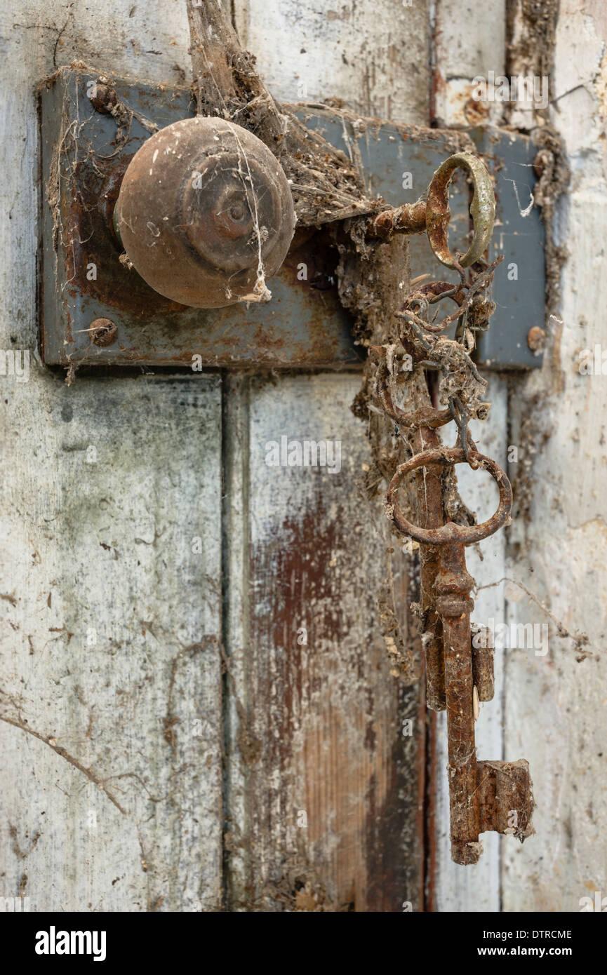 Spider Door Locks Amp Designer Door Locks In Dist Sc 1 St