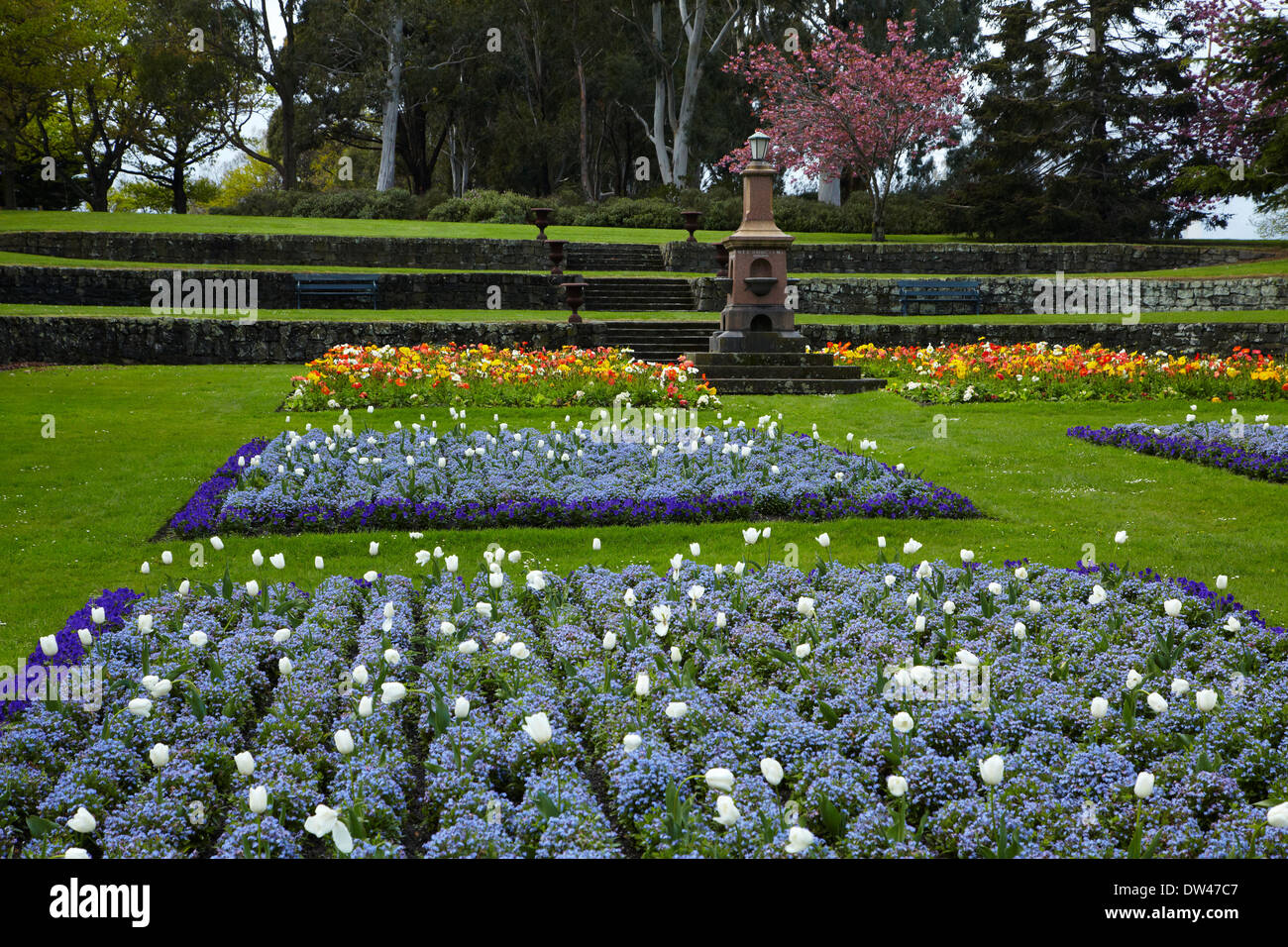 Garden Spring Flowers Nz Garden Ftempo