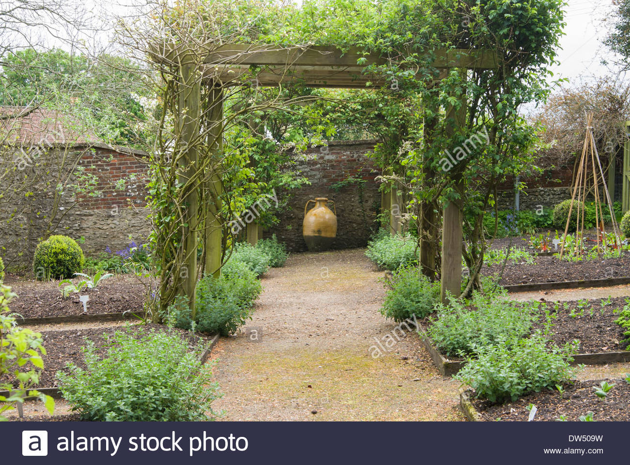 Vegetable garden with covered walkways - Formal Vegetable Garden With Raised Beds Clumps Of Nepeta Six Hills Giant