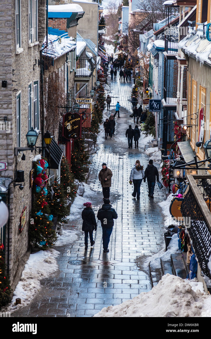 A Day at Québec City's Winter Carnival