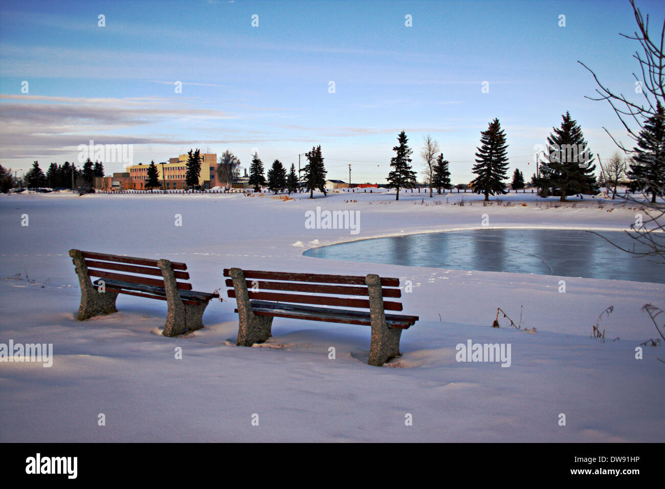 Winter Park Setting With 2 Park Benches And Frozen Ice