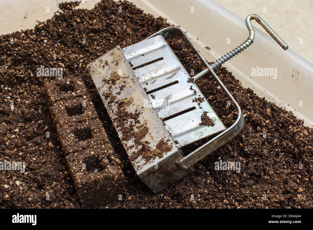 A row of four soil blocks and a soil block maker in a tub for Soil block maker
