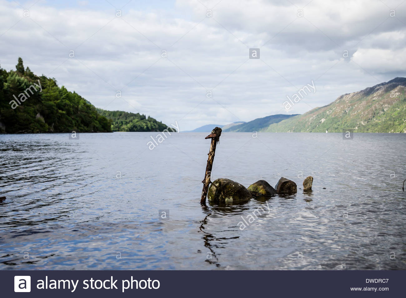 loch ness monster Loch ness monster synonyms, loch ness monster pronunciation, loch ness monster translation, english dictionary definition of loch ness monster n a large creature resembling a marine dinosaur purported to inhabit the waters of loch ness, a lake in scotland.