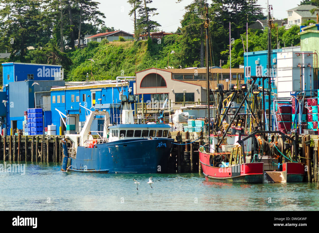 View of the waterfront with old fishing boats in newport for Newport oregon fishing