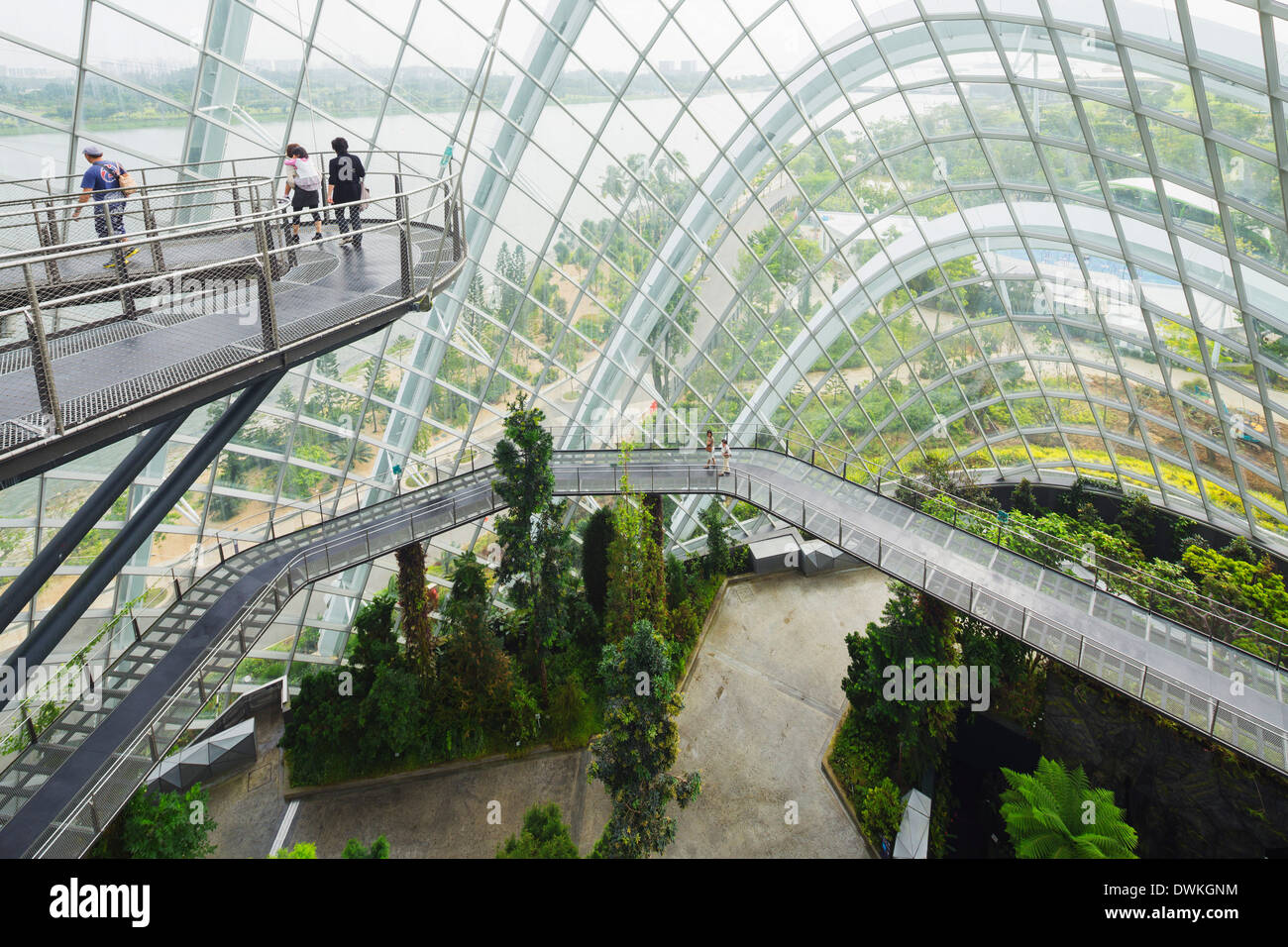 Canopy walkway Gardens by the Bay Cloud Forest botanic garden Singapore Southeast Asia Asia & Canopy walkway Gardens by the Bay Cloud Forest botanic garden ...