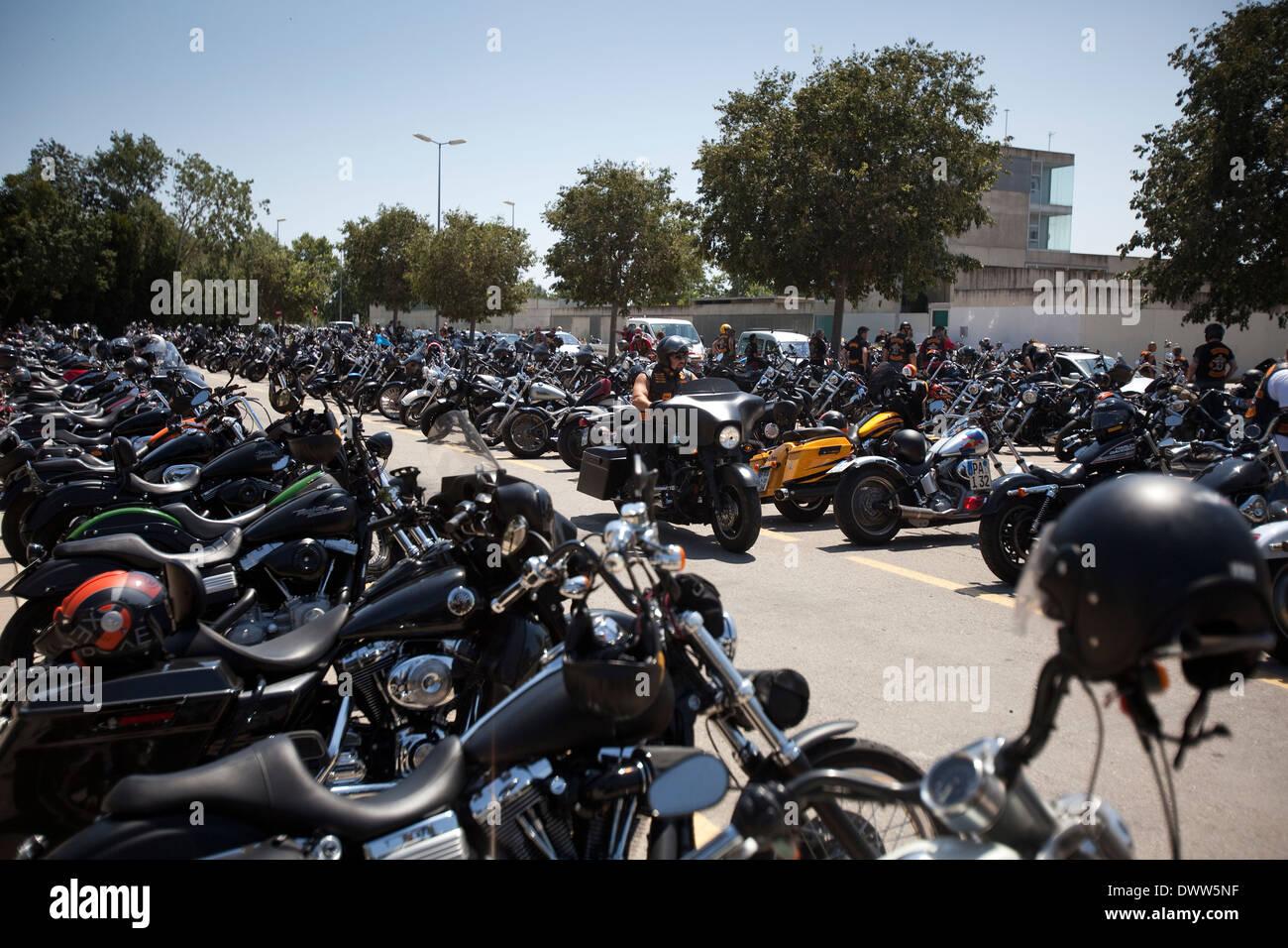 Biker Moto Motocicleta Motorbike Park Parked Transport Vehicle