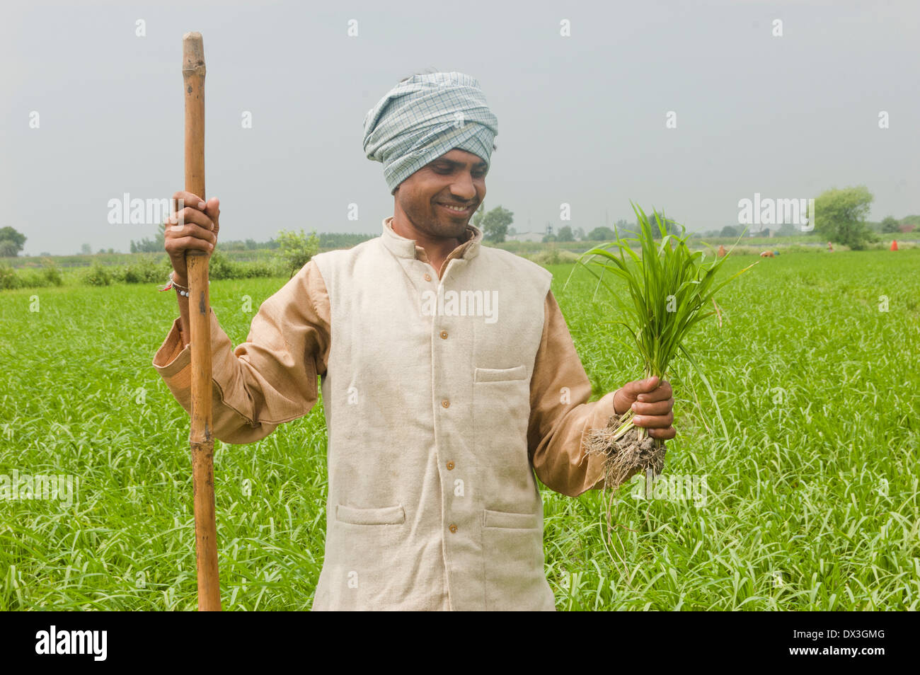 1 Indian Farmer Standing in Field Stock Photo, Royalty ...