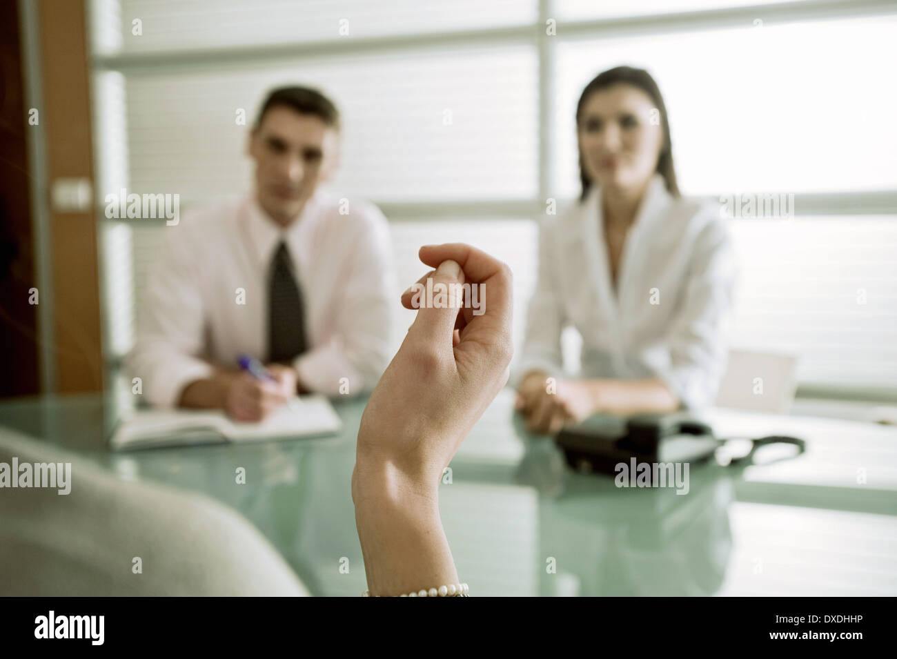 business-people-interviewing-professiona