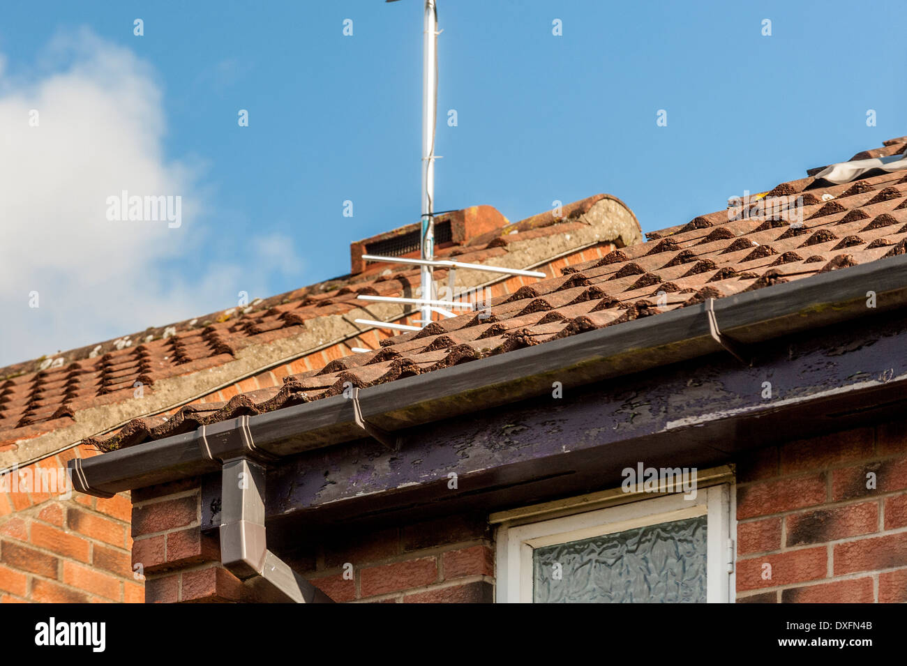 How to paint fascia boards - Standard Domestic Tiled Roof On House With Guttering And Fascia Board In Need Of Painting