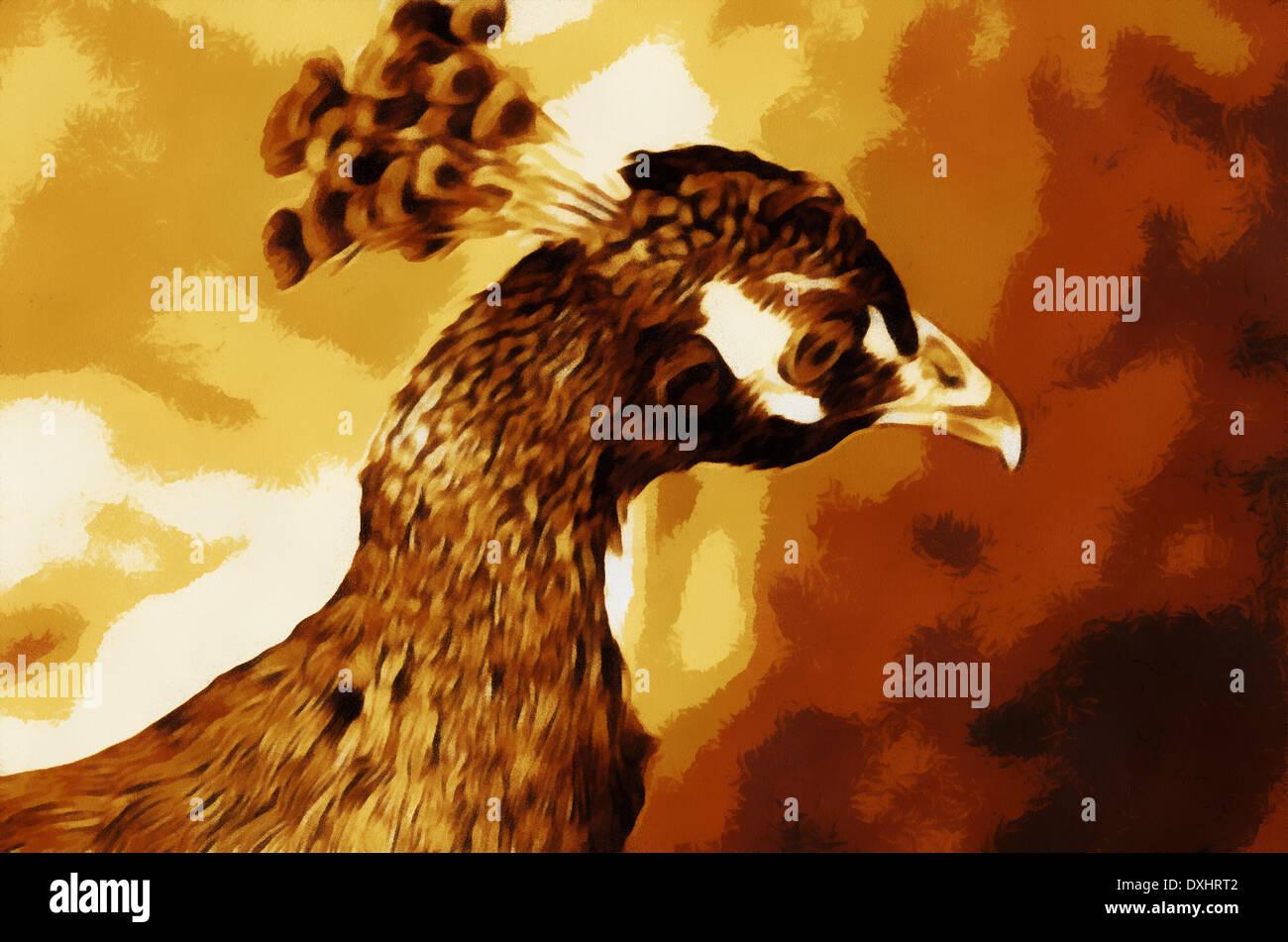 peacocks pavo linnaeus 1758 genus of large birds of pheasant