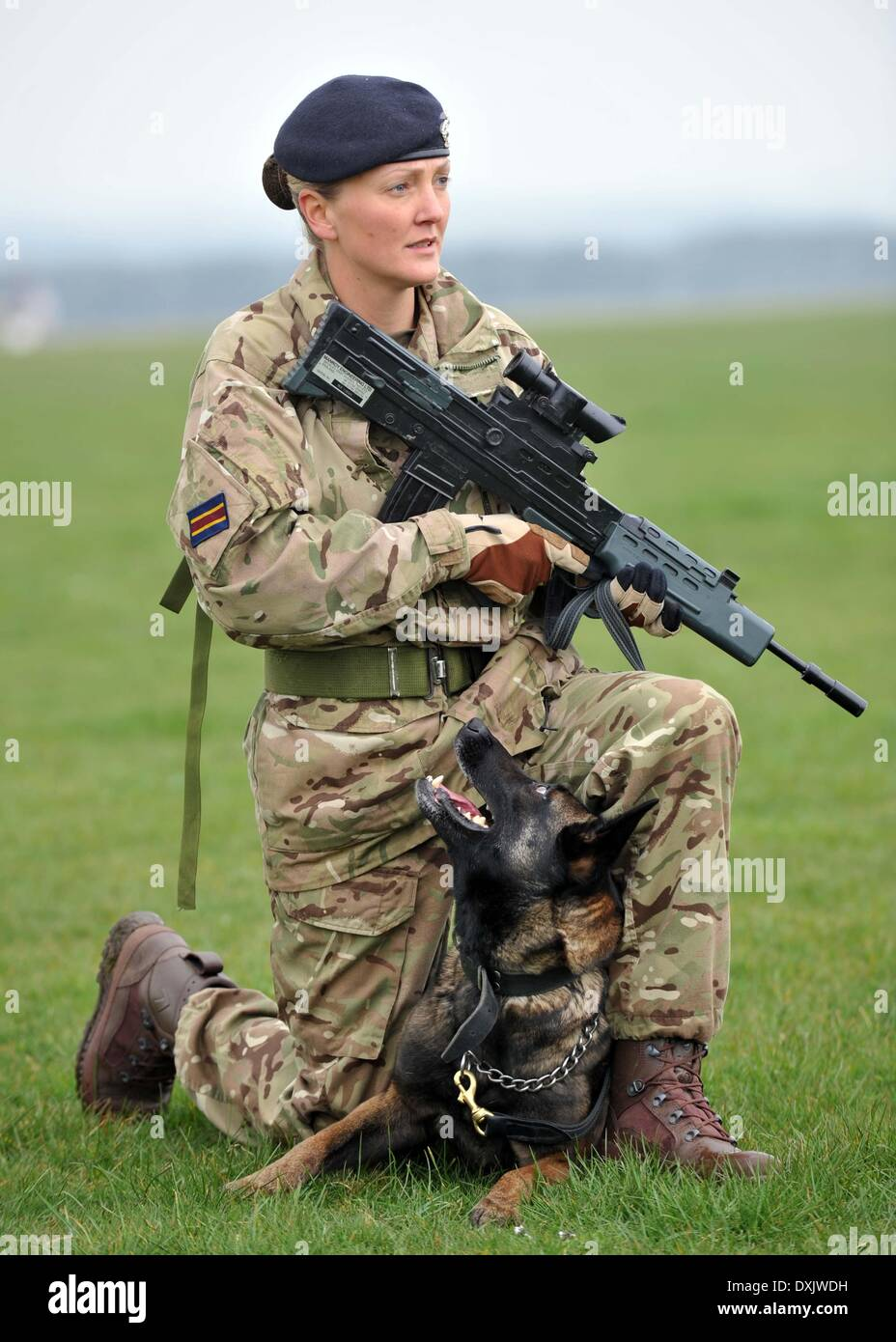 British Armys Cpl Amy Jane Harrop A Military Working Dog