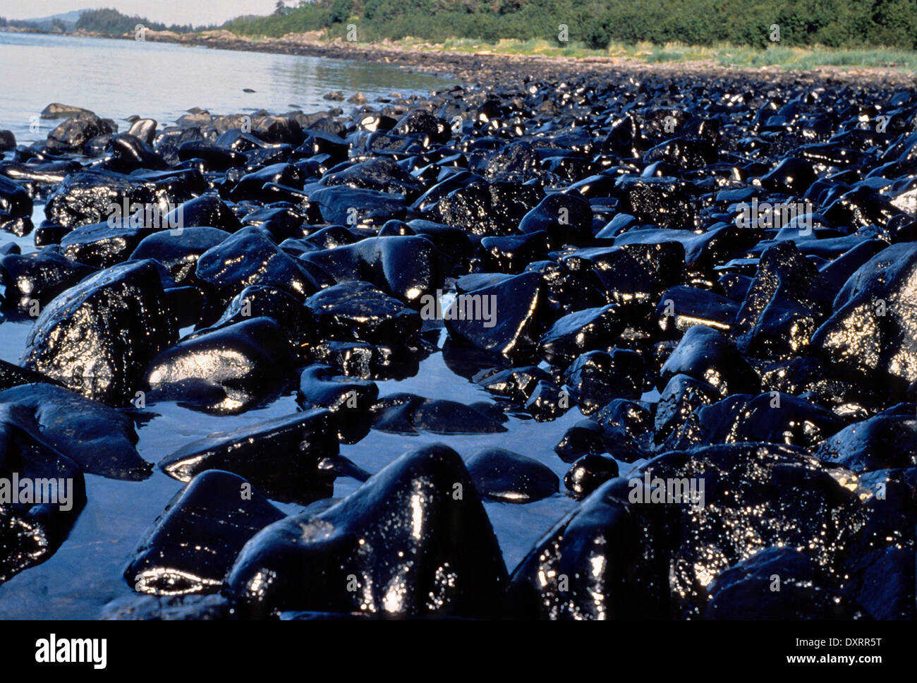 exxon oil spill 20 years after the exxon valdez: preventing--and preparing for--the next oil spill disaster [slide show] the biggest oil spill in us history sparked improvements in tanker construction and.