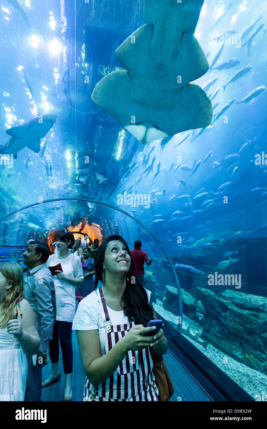 Fish aquarium in uae -  A Woman Taking A Photo Of A Shark In The Tunnel Dubai Aquarium Dubai