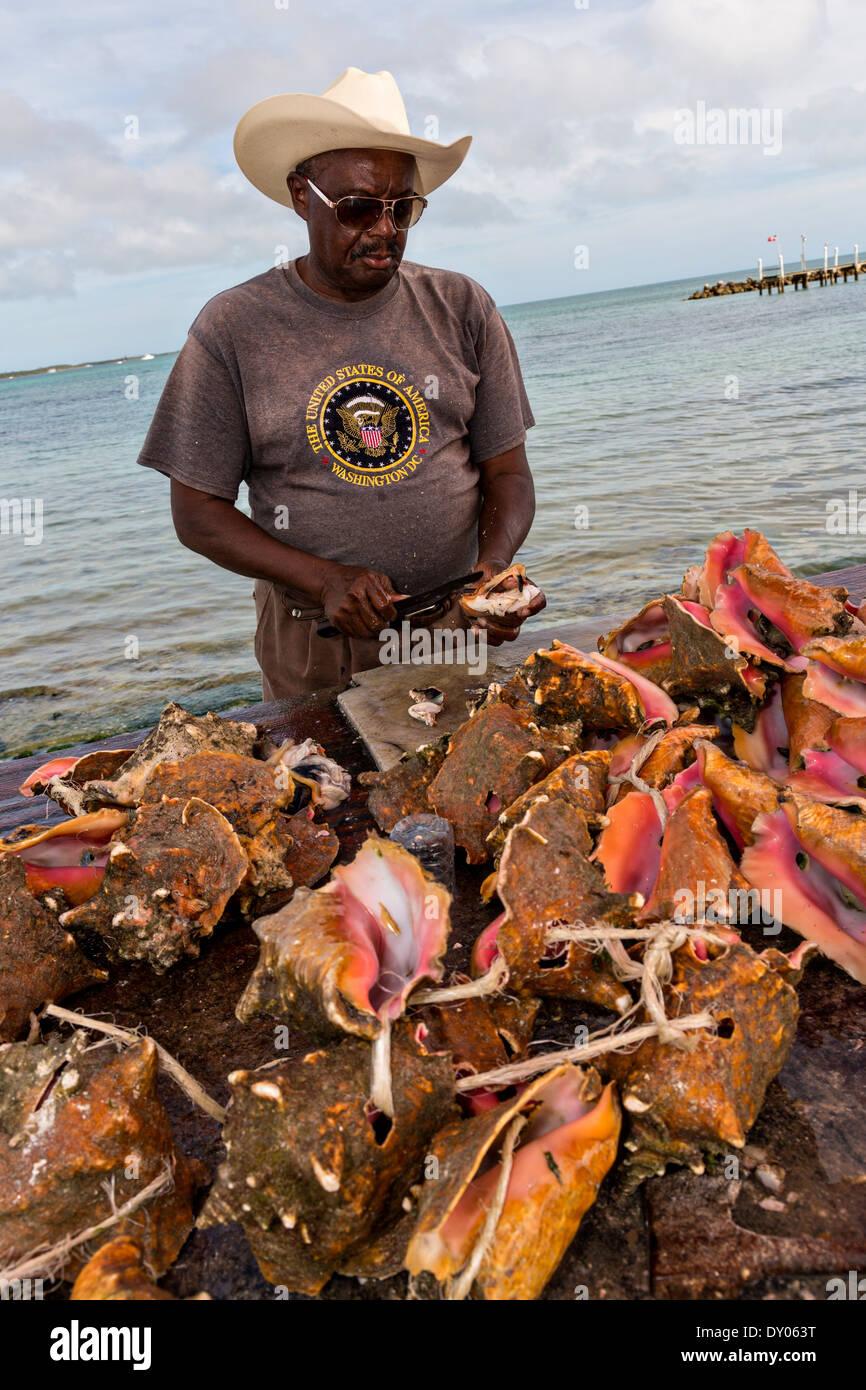 Cracking conch at the fresh fish market montagu beach for Bahamas fish market