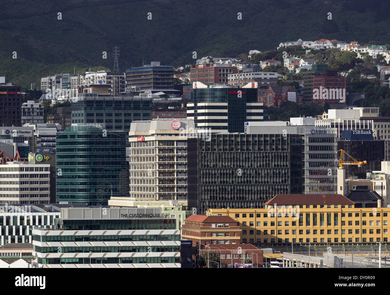 Wellington, New Zealand   Downtown Skyscrapers And Office Buildings In The  City Center Financial District