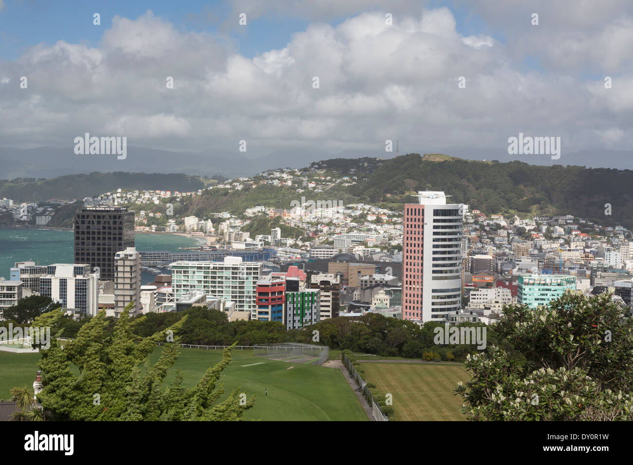Wellington, New Zealand   Cityscape Of Downtown Skyscrapers And Office  Buildings In CBD Financial District