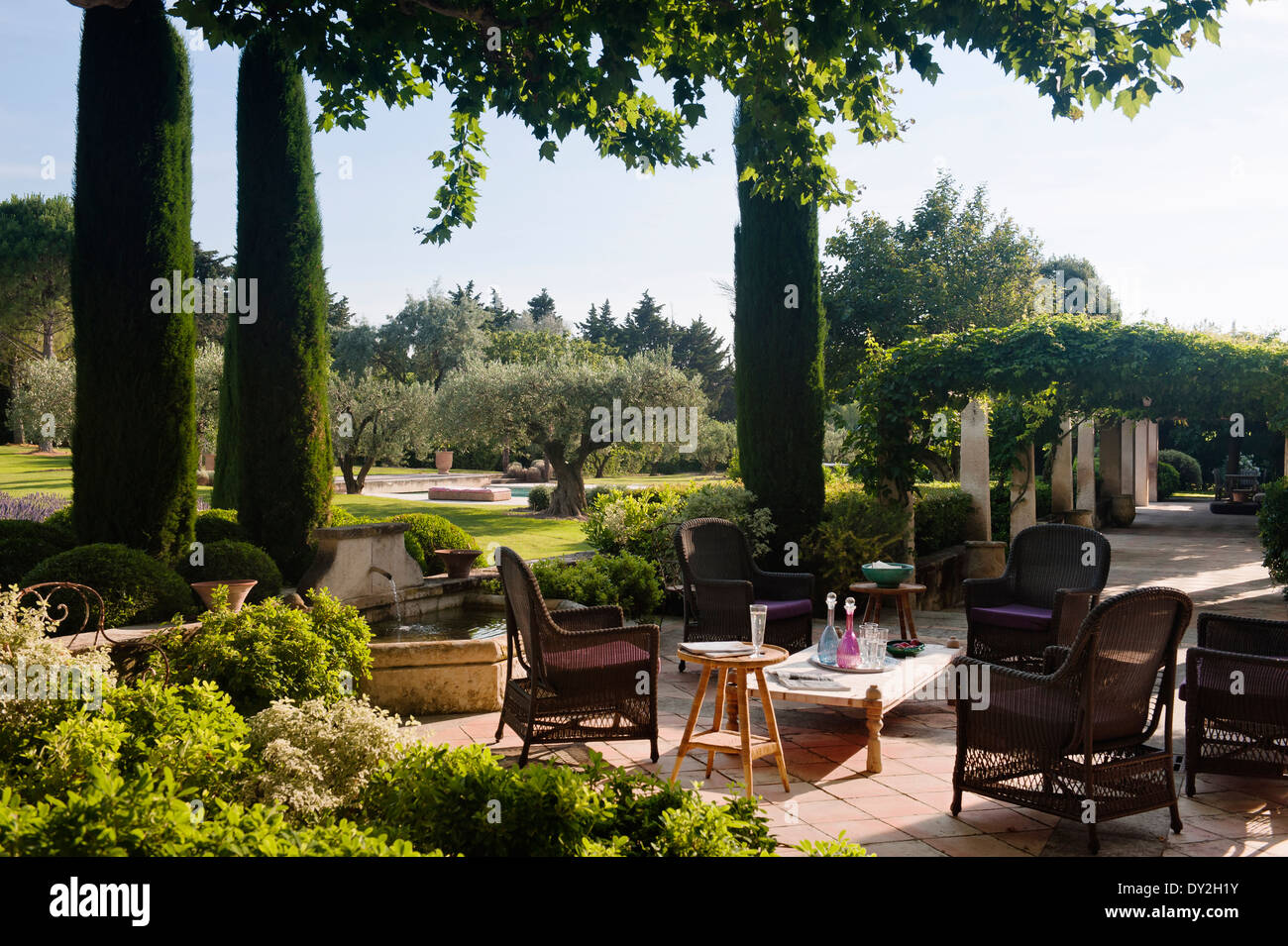 Wicker chairs on terrace in provencal garden with cypress for Terrace trees