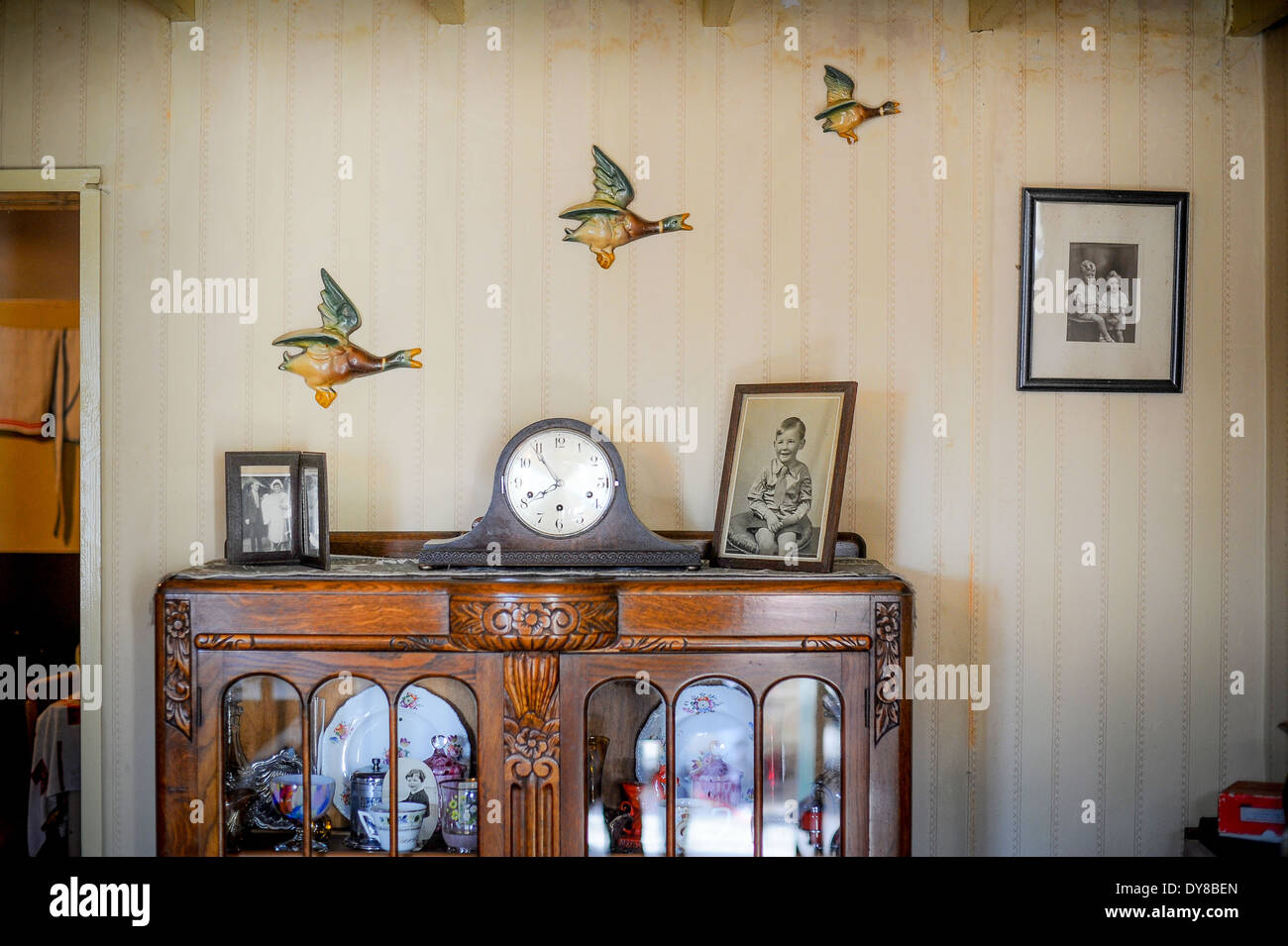 Flying Ducks On Vintage Wallpaper In A Second World War Living Room Stock Photo Royalty Free