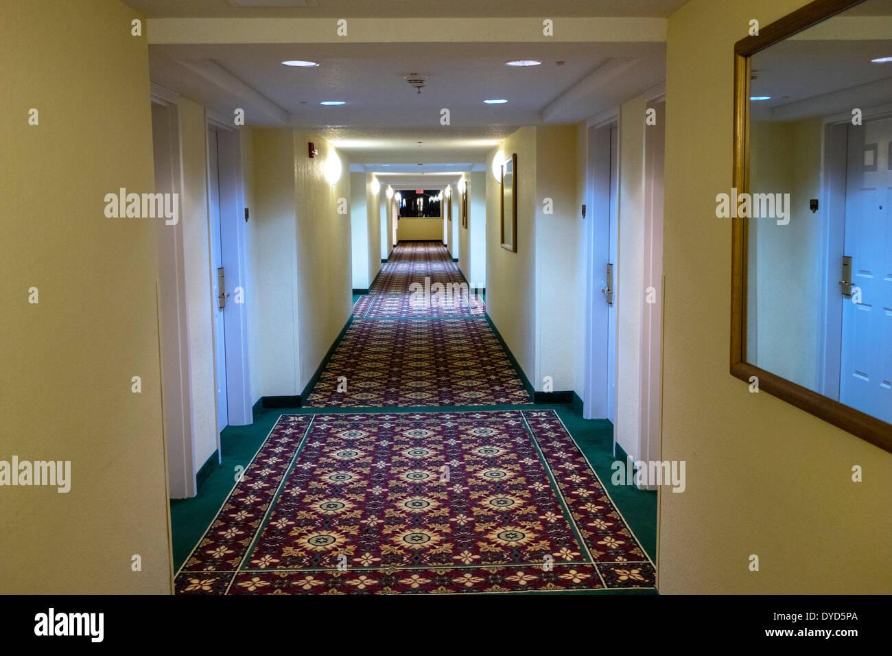 Hotel Candy Hall Orlando Florida Allure Resort International Drive Hotel Lobby