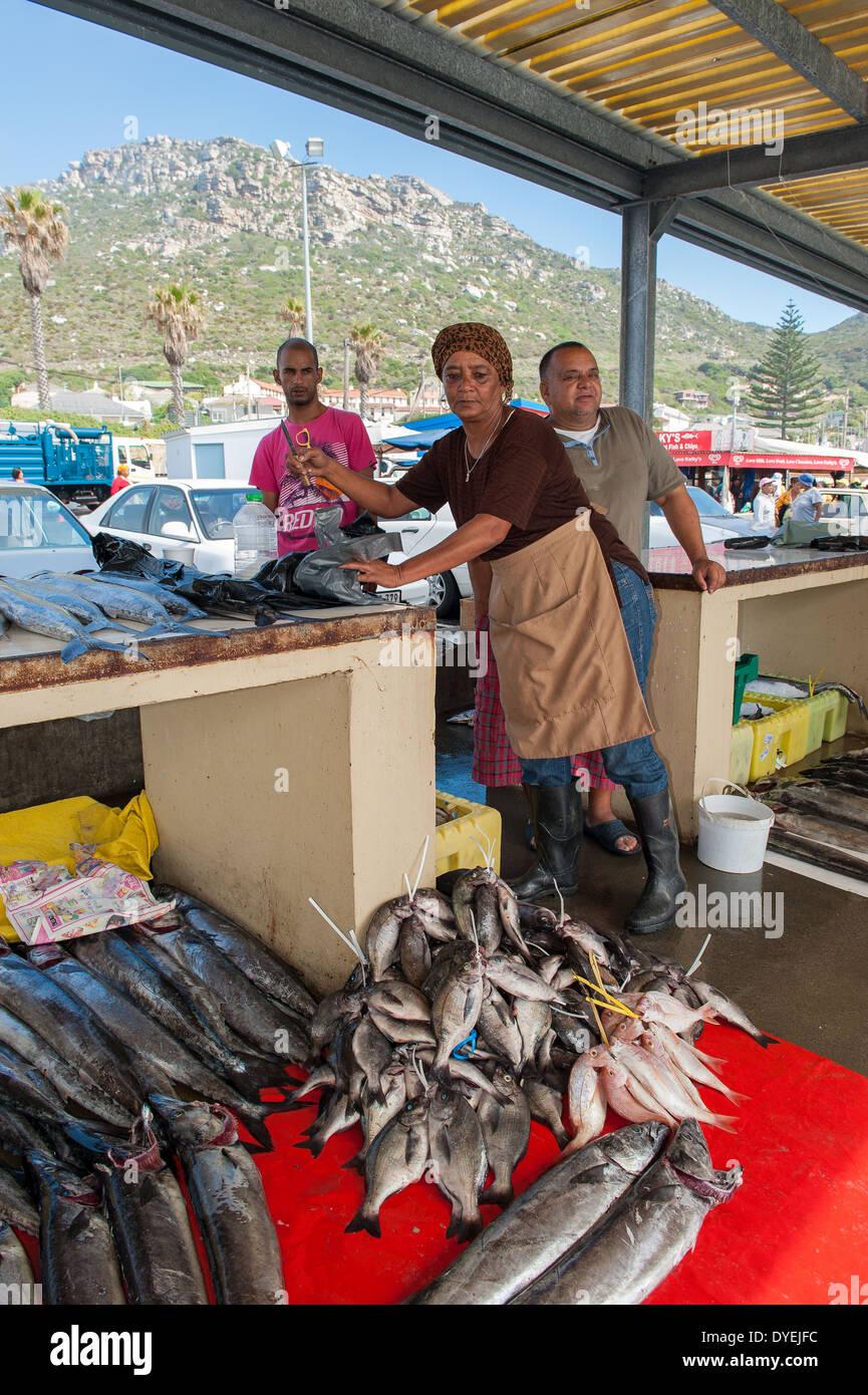 Vendor selling fresh fish in kalk bay harbor market for Harbor fish market