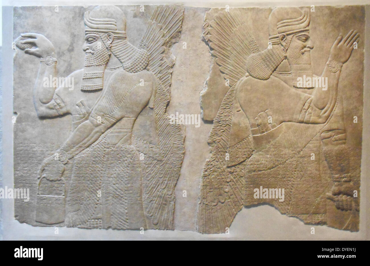 assyrian dating sites Nineveh on line who are the assyrians: who are the assyrians nicholas aljeloo the assyrian australian academic in iraq dating to the third century bc.