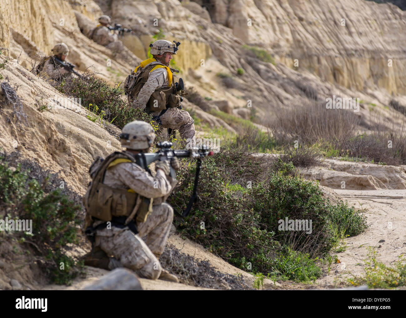 Marine Corps Infantry In Combat