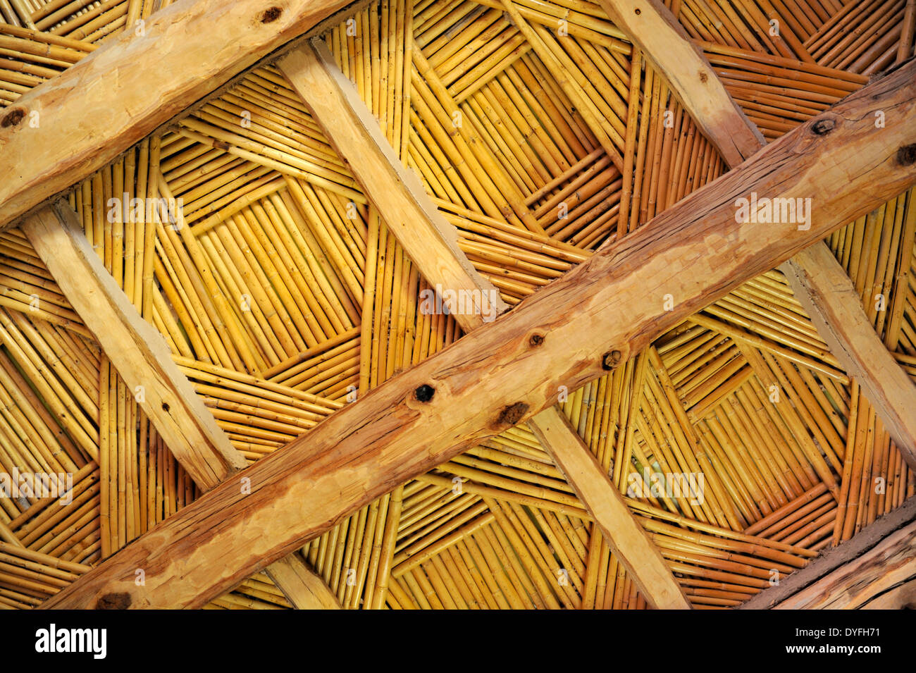 Bamboo roof home design ideas and pictures bamboo ceiling with wood beams holds up an adobe flat roof with the clay directly dailygadgetfo Images