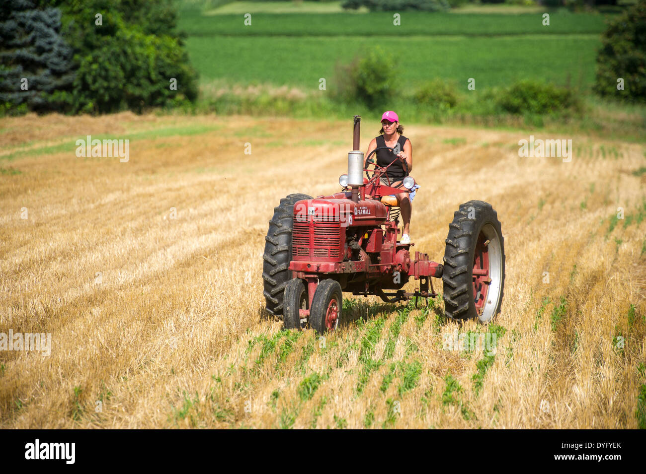 Woman farmer driving old tractor in field Stock Photo ...