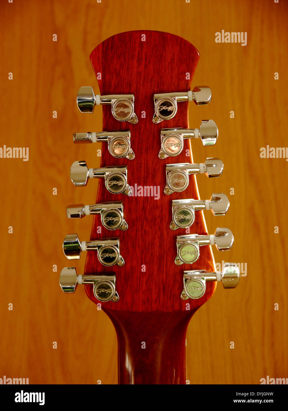 Head Stock Of 12 String Stagg Electro Acoustic Guitar Showing Chrome Tuning Pegs And Nut