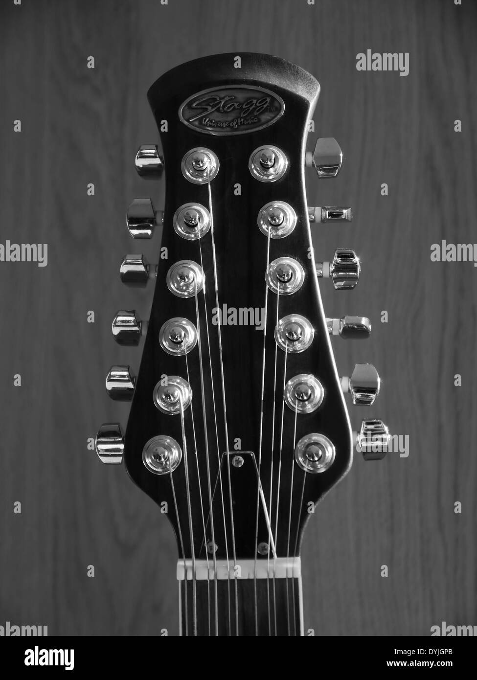 Head Stock Of 12 String Stagg Electro Acoustic Guitar Showing Chrome Tuning Pegs Strings And Nut