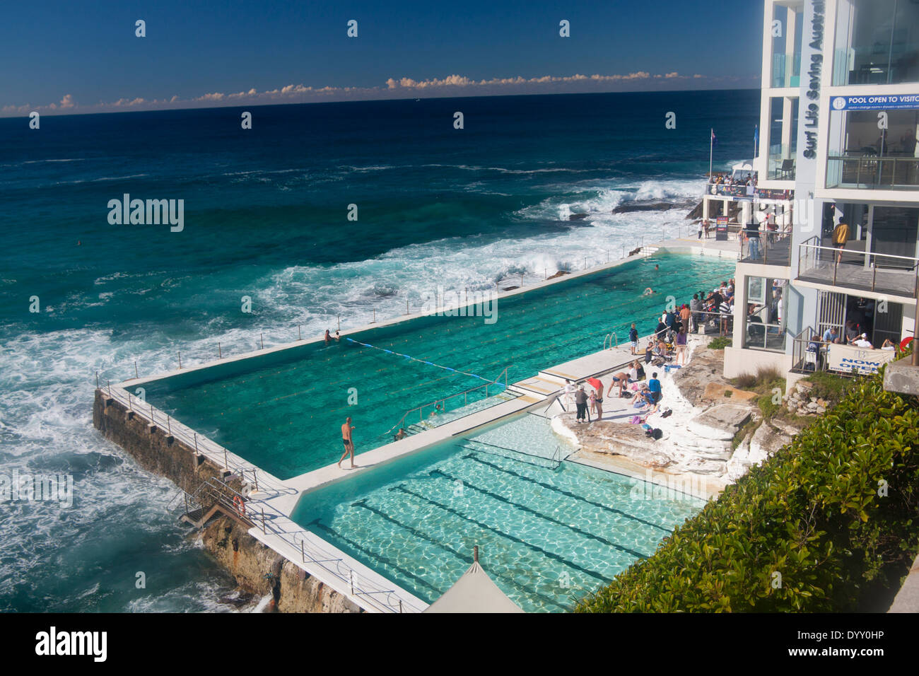 Bondi Icebergs Swimming Pool Sydney New South Wales Nsw Australia Stock Photo Royalty Free