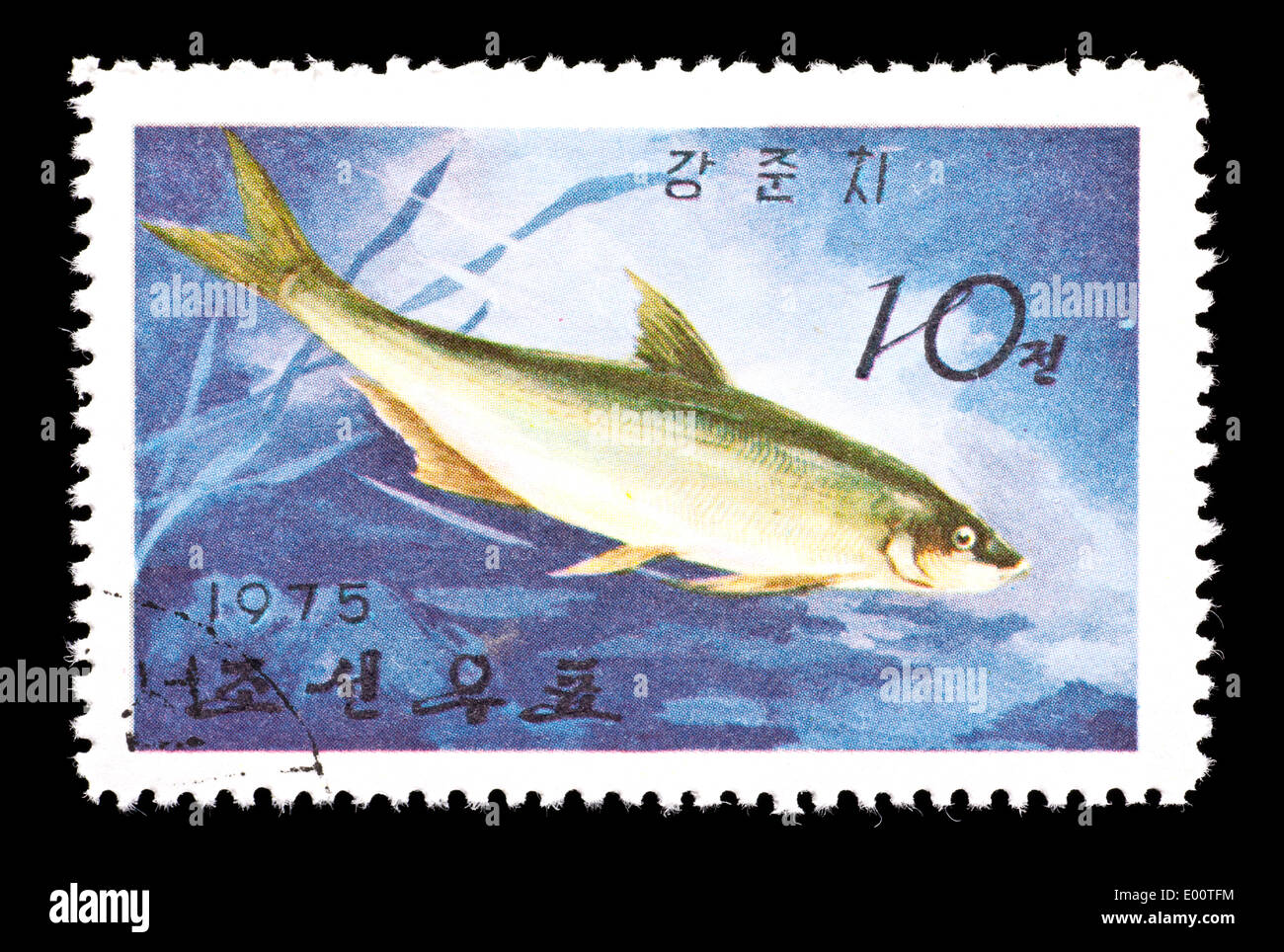 Freshwater fish korea - Postage Stamp From North Korea Depicting A Freshwater White Fish