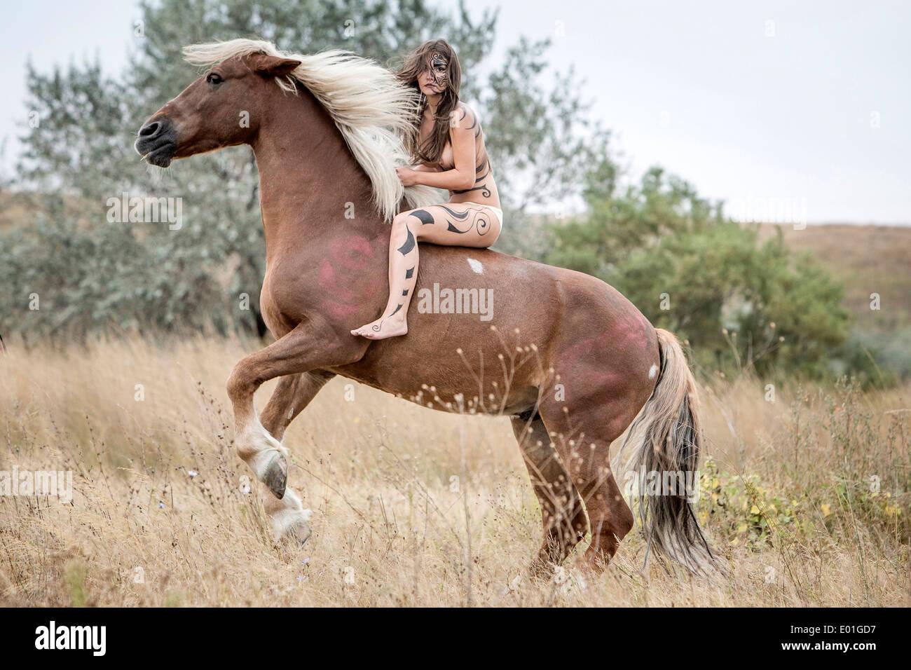 Pure Romanian Warmblood. Amazon on rearing chestnut horse ... - photo#32