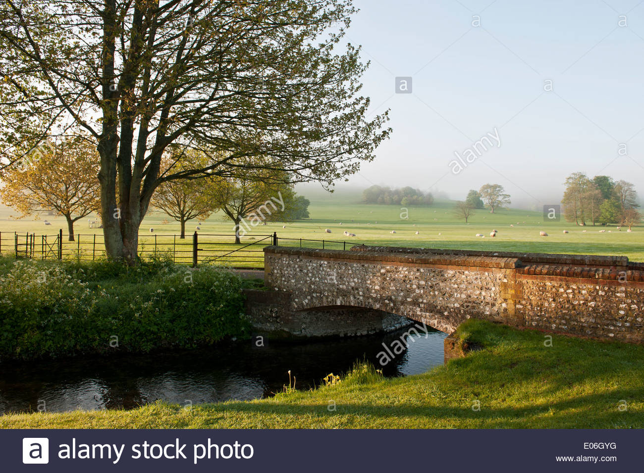 Grassland Stream. Stream In Grasslands Stock Footage Video 5420072 ...